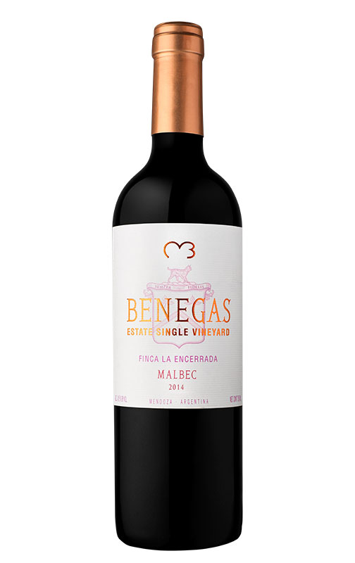 Benegas Single Vineyard Malbec